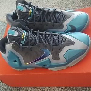 Nike Lebron James in Gray and Blue